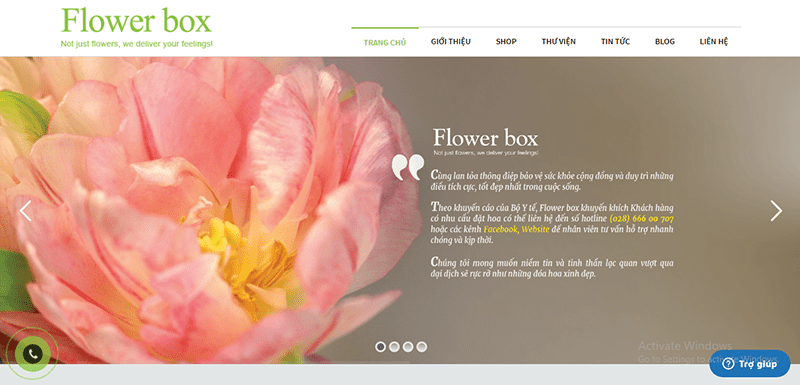 Shop Flower Box